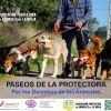 PRIMER PASEO SOLIDARIO DE LA PROTECTORA 2016