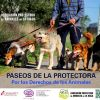 4º PASEO SOLIDARIO POR LOS DERECHOS DE LOS ANIMALES 2016