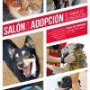 SALÓN DE LA ADOPCIÓN DE ANIMALES ABANDONADOS DE LOGROÑO, JUNIO 2015