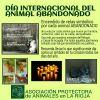 DíA INTERNACIONAL DEL ANIMAL ABANDONADO 2015 (fotos)